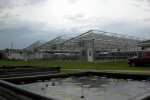 Federal Greenhouse 8